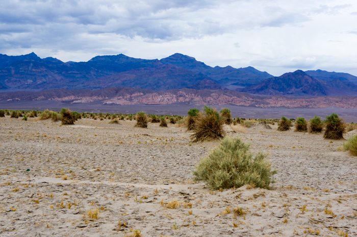 Death Valley 12